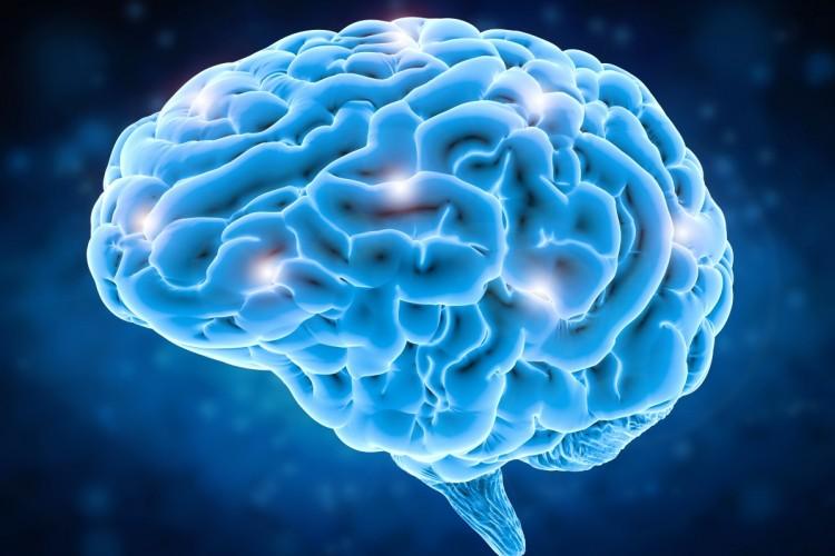 A brain in blue