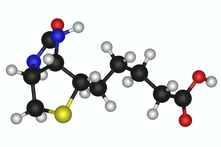3d model of biotin chemical structure