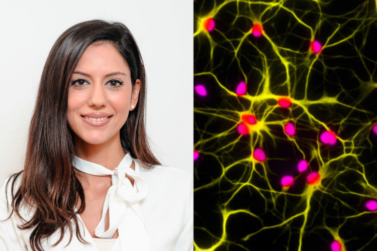 image of Maria Stavrou and an image of astrocytes